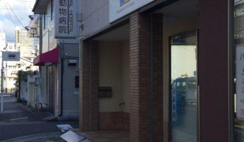 右手に「ハートン動物病院」があります。お店のすぐ隣です。